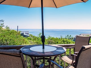 Spectacular Oceanfront on Cahoon Hollow Beach w AC - Wellfleet vacation rentals