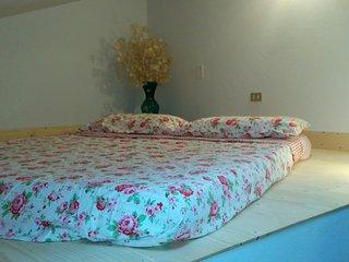 Le Mimose B&B Camera Familiare con bagno privato - Vinci vacation rentals
