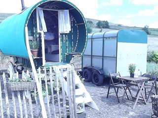 Gypsy caravan Romantic,Glamping24/7 private hottub - Alston vacation rentals