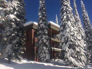 Deluxe 5 Bedroom/4 Bath Home On the Ski-Way - Silver Star Mountain vacation rentals