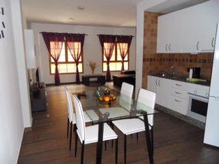 Amazing 2 bedroom flat, private roof terrace - Playa de Arinaga vacation rentals