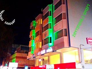 2 bedroom Condo with Internet Access in Didim - Didim vacation rentals