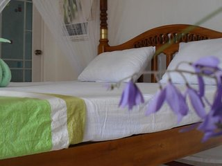 Castle Bay Resort Garden view room Non AC Triple - Weligama vacation rentals