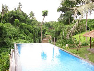 River View Villa Ubud - Lodtunduh vacation rentals