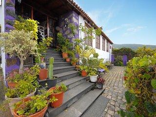 Beautiful 3 bedroom Icod de los Vinos House with Internet Access - Icod de los Vinos vacation rentals