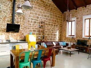 Breathtaking loftstyle house - Neve Tzedek - Tel Aviv vacation rentals