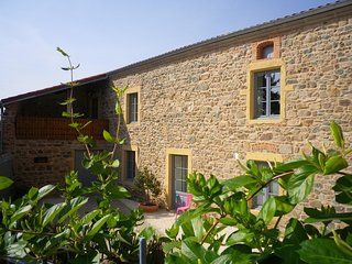Nice Bed and Breakfast with Internet Access and Housekeeping Included - Saint-Jean-Saint-Maurice-sur-Loire vacation rentals