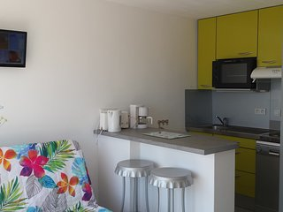Cozy Biscarrosse Studio rental with Satellite Or Cable TV - Biscarrosse vacation rentals