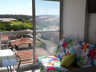 Nice Biscarrosse Studio rental with Satellite Or Cable TV - Biscarrosse vacation rentals