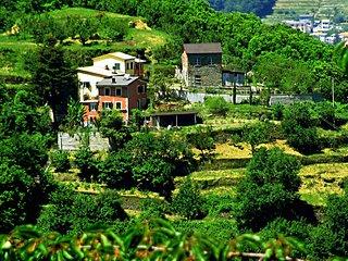 Casa bucolica 20km da Portofino - Coreglia Ligure vacation rentals