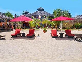 Negril Beachfront Cougar Villa, 6 BR - Negril vacation rentals