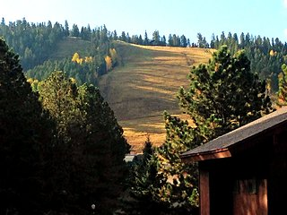 2 bedroom Condo with Satellite Or Cable TV in Angel Fire - Angel Fire vacation rentals