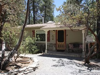 Nice House with Television and Satellite Or Cable TV - Idyllwild vacation rentals