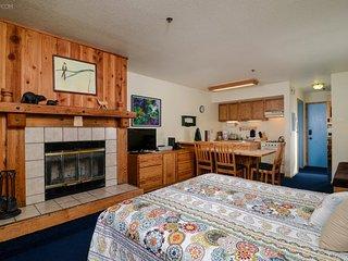 Delightful Studio, The Meadows #113 - Kirkwood vacation rentals