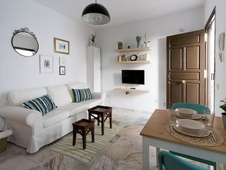 [93] Lovely 1bd flat with shared terrace - Seville vacation rentals