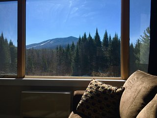 Burke View Villa -Kingdom Trails Trailside Lodging - East Burke vacation rentals
