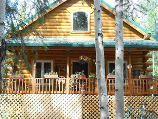 Spacious Modern Cabin - Fairbanks vacation rentals