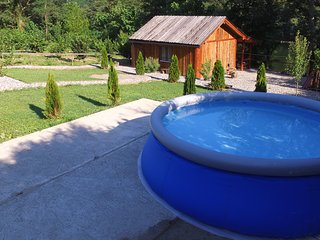 1 bedroom House with Internet Access in Bajina Basta - Bajina Basta vacation rentals
