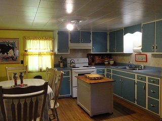 Handicap Friendly Cabin - Franklin vacation rentals