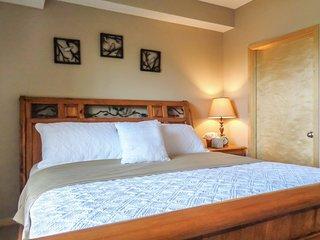 Pristine 1Br Condo  w/ Lot of Amenities & Balcony - Minneapolis vacation rentals