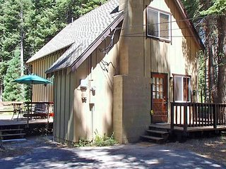 Cozy Modern Cabin Nestled in the Woods 2bd/1ba - Homewood vacation rentals