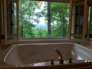 25% off, Ozark Spring Cabins #3, King Bed, Giant Spa Tub, Kitchen, Secluded, Private Deck with View - Eureka Springs vacation rentals