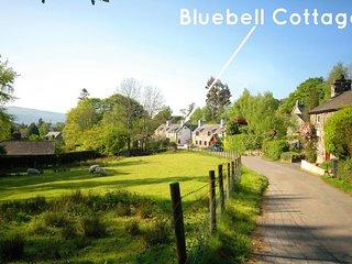2 bedroom Cottage with Internet Access in Llanrwst - Llanrwst vacation rentals