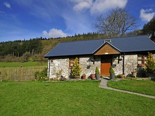 3 bedroom Cottage with Internet Access in Ponterwyd - Ponterwyd vacation rentals