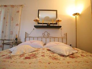 TH01042 Apartments Villa Meri / Studio A1 - Liznjan vacation rentals