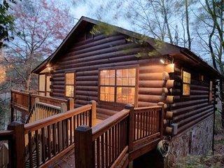 Pet Friendly Cabin Between Blue Ridge and Ellijay - Ellijay vacation rentals