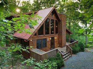 Dog Friendly Blue Ridge Cabin - Ellijay vacation rentals