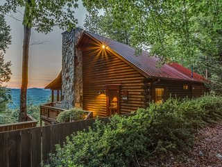 North Georgia Couples Pet Friendly Cabin - Ellijay vacation rentals