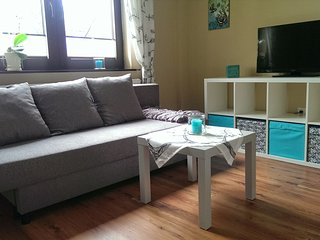 Nice Condo with Internet Access and Wireless Internet - Fritzlar vacation rentals