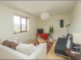 Modern Apartment in National Park stunning views - Hathersage vacation rentals
