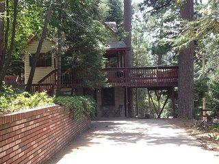 Nice 1 bedroom Condo in Lake Arrowhead - Lake Arrowhead vacation rentals