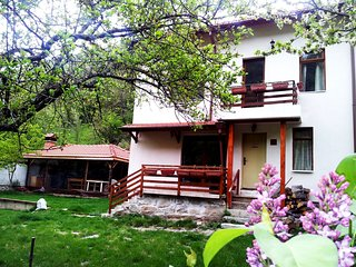 Perfect House with Internet Access and Television - Pastra vacation rentals