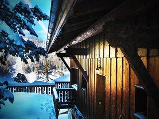 Chalet Nichoir - Savoie vacation rentals