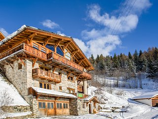 Charming 7 bedroom Chalet in Peisey-Nancroix - Peisey-Nancroix vacation rentals