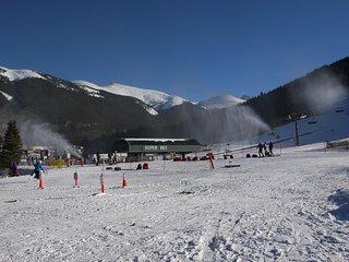 FP304 Foxpine Inn - Copper Mountain vacation rentals