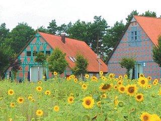 *Wellness und Reiten in der wunderschönen Heide* - Hitzacker vacation rentals