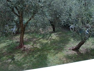 LA CORTE DI MAGU FRONT LAKE APARTAMENT MALCESINE BIANCO 6P - Malcesine vacation rentals