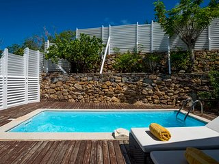 Bright 1 bedroom Villa in Pointe Milou with Internet Access - Pointe Milou vacation rentals