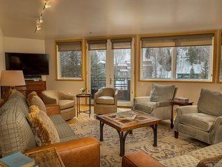 418 Ice House Telluride Vacation Condo For 6 Guests - Telluride vacation rentals