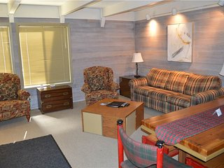Dollar Meadows Condo 1382 - Sun Valley vacation rentals