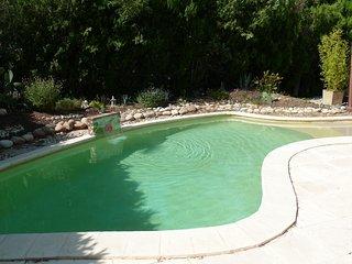 Studio avec piscine à 5 km d'Avignon - Le Pontet vacation rentals