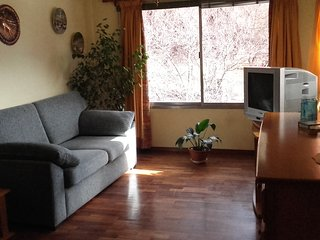Central bright apartment in front of the park - San Carlos de Bariloche vacation rentals