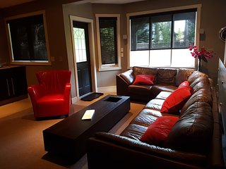 Luxury walk-out basement with parvtie room - Calgary vacation rentals