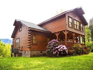 Bear Family - Gatlinburg vacation rentals