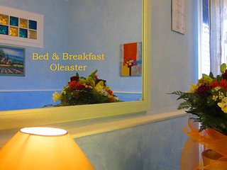 B&B Oleaster, peaceful countryside location - Bolognetta vacation rentals