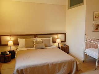 GARDENIA B&B FRAXINUS EXCELSIOR - Double room - Frassinello Monferrato vacation rentals